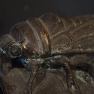 bronzo mosca1