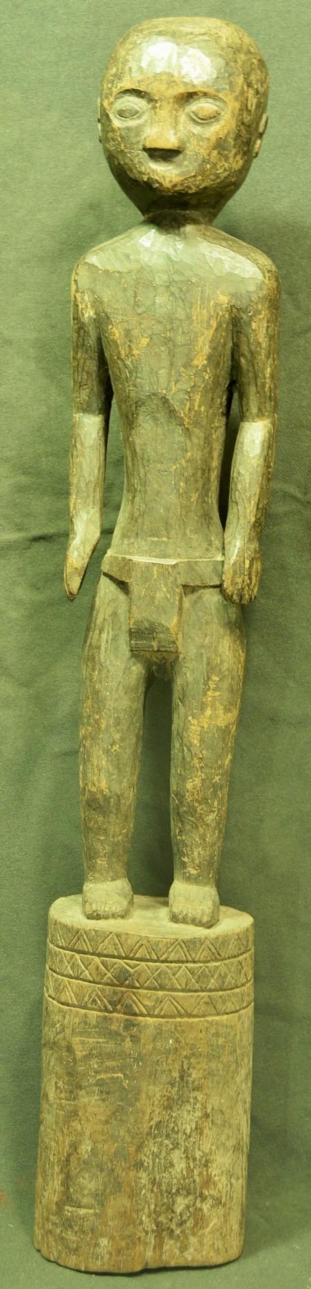 statua timorest